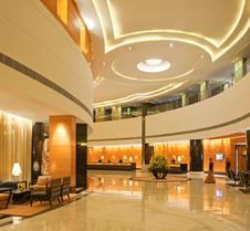 德令哈拉迪森酒店 - 新德里