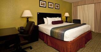 德克薩斯州大酒店及會議中心 - 米德蘭 - 米德蘭(德克薩斯州)