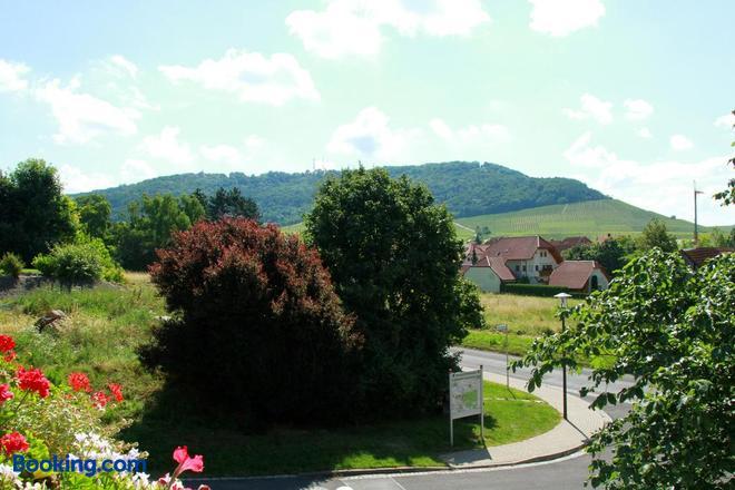 Gasthof zum Rödelseer Schwan - Rödelsee - Outdoors view