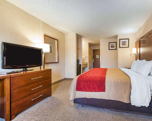 Comfort Inn North - Air Force Academy Area - Colorado Springs - Bedroom