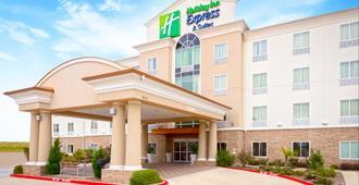Holiday Inn Express Hotel & Suites Dallas West, An IHG Hotel - דאלאס - בניין
