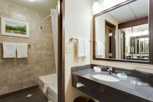 聖路易斯拱門德魯瑞廣場酒店 - 聖路易 - 聖路易斯 - 浴室