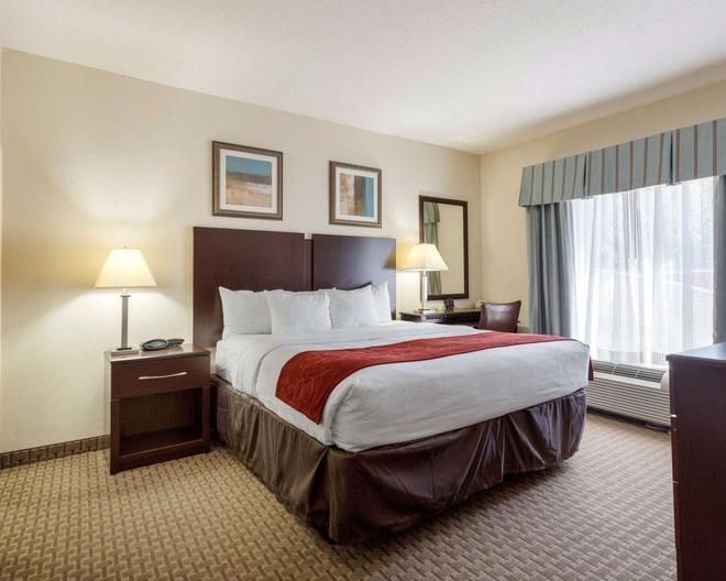 Comfort Suites Olive Branch West - Olive Branch - Bedroom