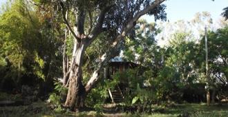 Miru Village - Hanga Roa - Vista del exterior
