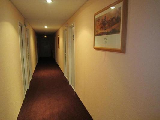 博茹瓦爾南特快速宮殿酒店 - 南特 - 南特 - 門廳
