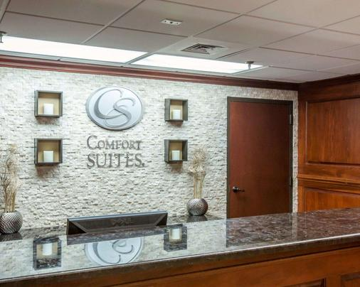 Comfort Suites Outlet Center - Asheville - Front desk