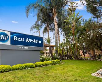 Best Western Pine Tree Motel - Chino - Gebouw