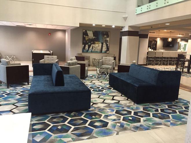 北達拉斯 - 艾迪生麗笙酒店 - 艾迪遜 - 艾迪生(德州) - 休閒室