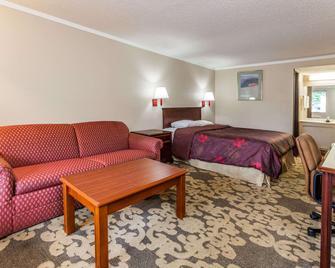 Knights Inn Detroit Area/Farmington Hills - Farmington Hills - Bedroom