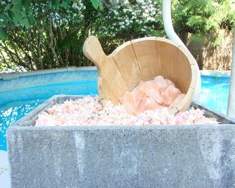 Thai-Fusion Spa Kochatelier - Bürglen (Thurgau) - Pool