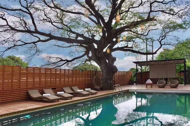 Bamboori Boutique Resort Chiang Mai - Chiang Mai - Pool