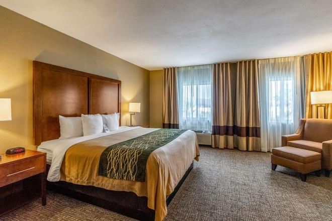 Comfort Inn Tucson - Tucson - Phòng ngủ