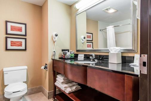 Comfort Inn & Suites Ardmore - Ardmore - Phòng tắm