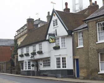The Dog & Partridge by Greene King Inns - Bury St Edmunds - Building