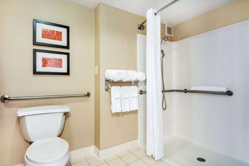 Comfort Suites at Woodbridge - Avenel - Bathroom