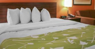 Econo Lodge Winnipeg South - Winnipeg - Bedroom