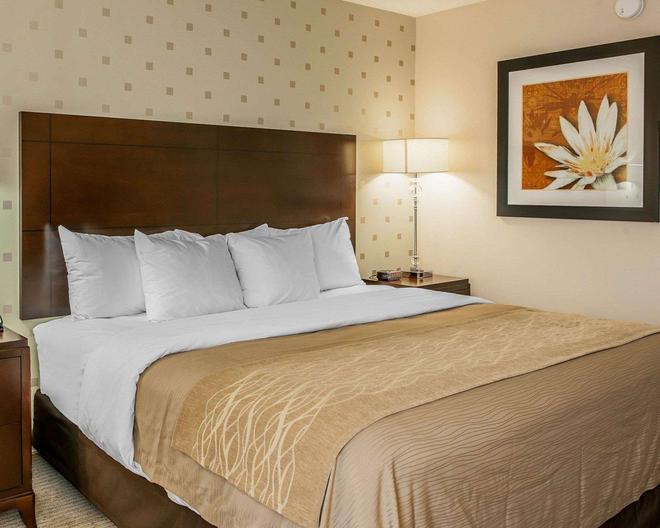 Comfort Inn Bloomington near University - Bloomington - Bedroom