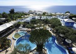 戈多帕多 2 號美麗農場溫泉酒店 - 福利奧迪伊斯基亞 - 福利奧 - 游泳池