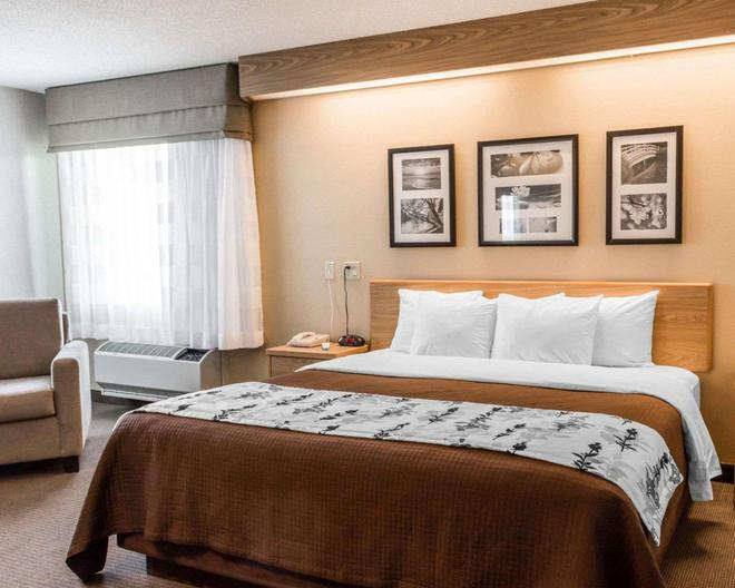 Sleep Inn Lynchburg - University Area and Hwy 460 - Lynchburg - Bedroom