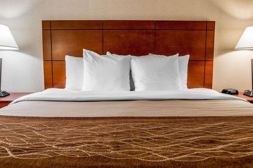 Comfort Inn & Suites University South - Ann Arbor - Makuuhuone