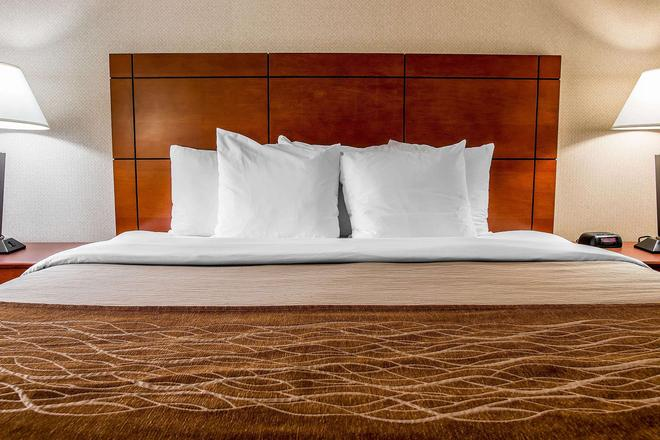 Comfort Inn & Suites University South - Анн-Арбор - Спальня