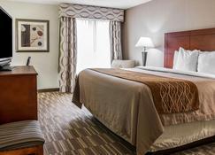 Comfort Inn & Suites University South - Ann Arbor - Habitación