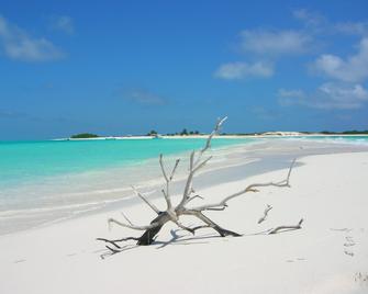 Posada Acuario - Los Roques - Playa