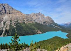 Best Western Plus Siding 29 Lodge - Banff - Vista del exterior