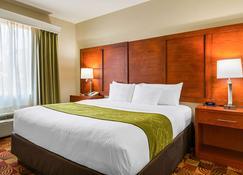 Comfort Suites Lake Charles - Lake Charles - Bedroom