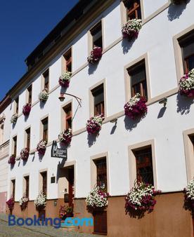 Hotel U Dómu sv. Václava - Olomouc - Building