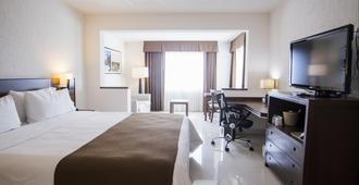 Holiday Inn Express Tuxtla Gutierrez La Marimba - Tuxtla Gutiérrez - Bedroom