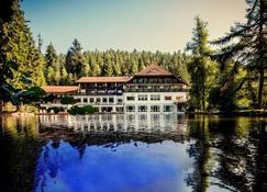 Hotel Langenwaldsee - Freudenstadt - Bina