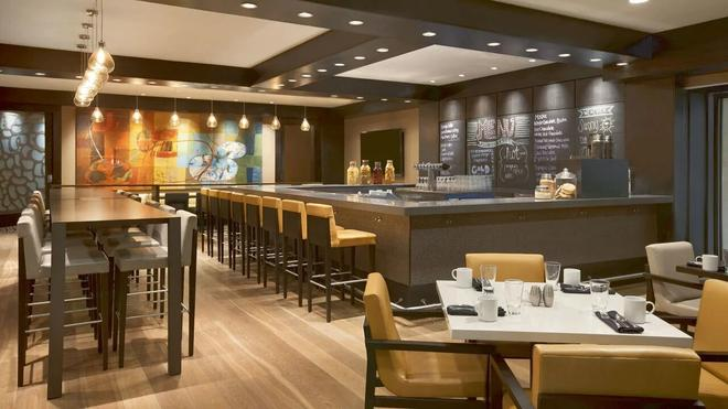 Hyatt Regency Birmingham-The Wynfrey Hotel - Birmingham - Bar