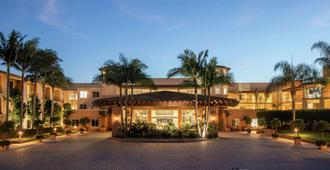 The Cassara Carlsbad Tapestry Collection by Hilton - Carlsbad