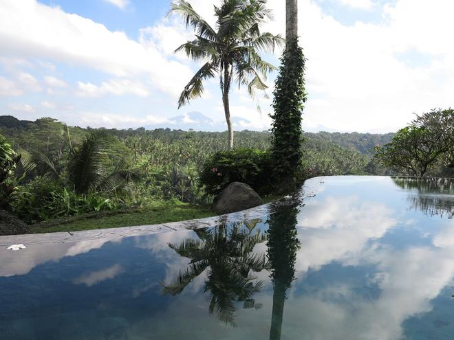 Taman Bebek Resort & Spa - Ubud - Outdoors view