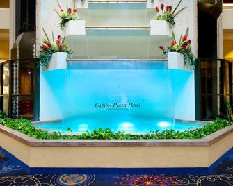 Capitol Plaza Hotel Jefferson City - Jefferson City - Pool