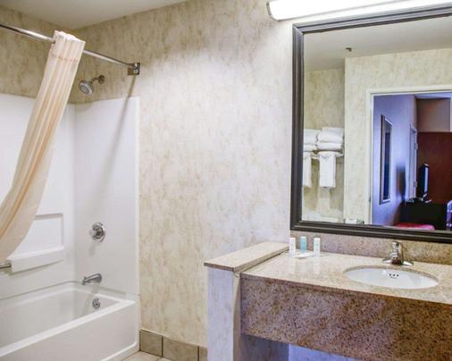 Comfort Suites Gadsden Attalla - Gadsden - Bathroom