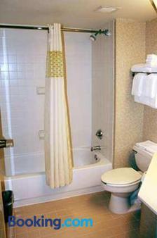 Hampton Inn Lexington / Georgetown I-75 - Georgetown - Bathroom
