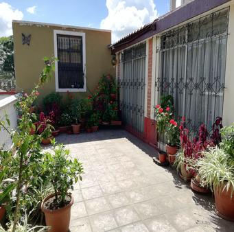 馬里亞納佩蒂特住宿加早餐旅館 - 瓜地馬拉 - 室外景