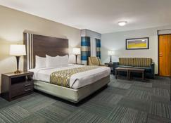 Best Western Naperville Inn - Naperville - Slaapkamer