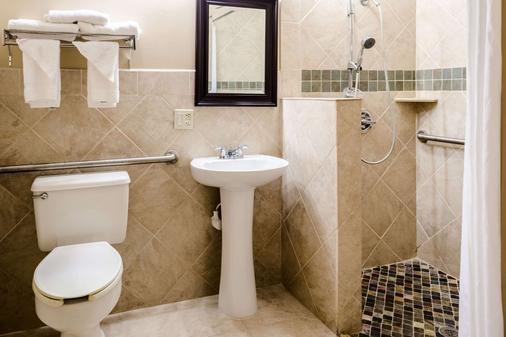 Quality Inn Moss Point - Pascagoula - Moss Point - Bathroom