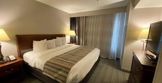 Country Inn & Suites by Radisson, Athens, GA - Athens - Chambre