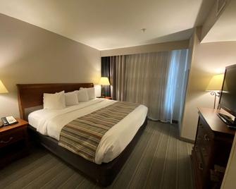 Country Inn & Suites by Radisson, Athens, GA - Athens - Makuuhuone