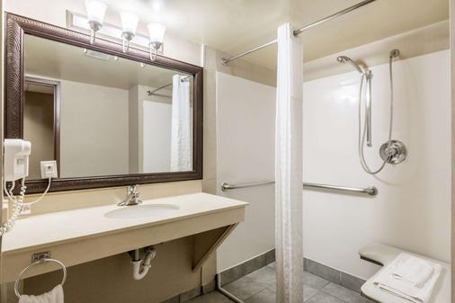 Comfort Suites Austin Airport - Austin - Phòng tắm