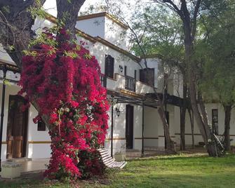 Posada Del Olivo - Nonogasta - Building