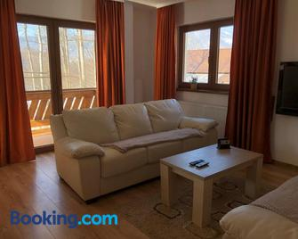 Casa de Vacanta Mogosa - Baia Sprie - Living room
