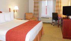 Country Inn & Suites by Radisson, Orlando, FL - Orlando - Bedroom