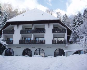 Berghotel Schwarzwaldblick Triberg - Triberg - Building