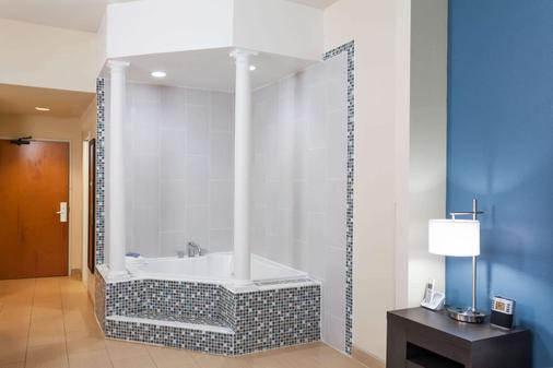 Wingate by Wyndham Schaumburg / Convention Center - Schaumburg - Phòng tắm