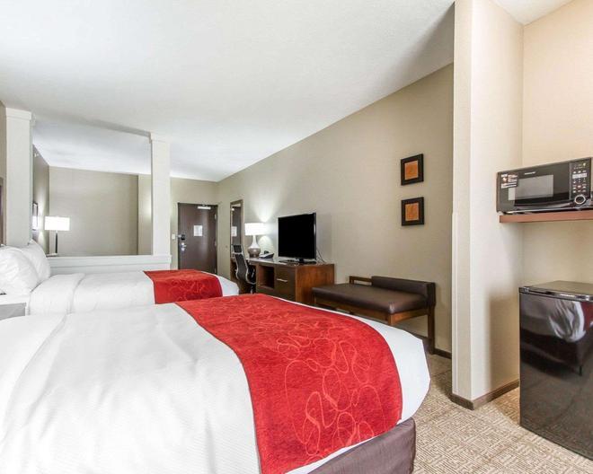 Comfort Suites West Omaha - Omaha - Chambre
